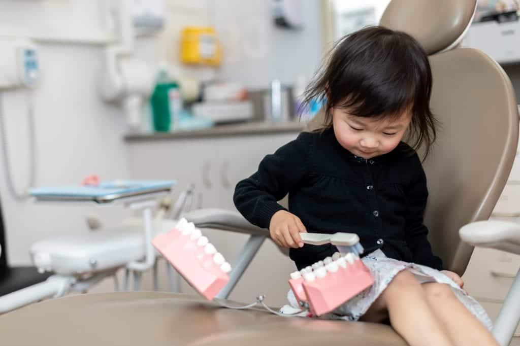Child brushing teeth model